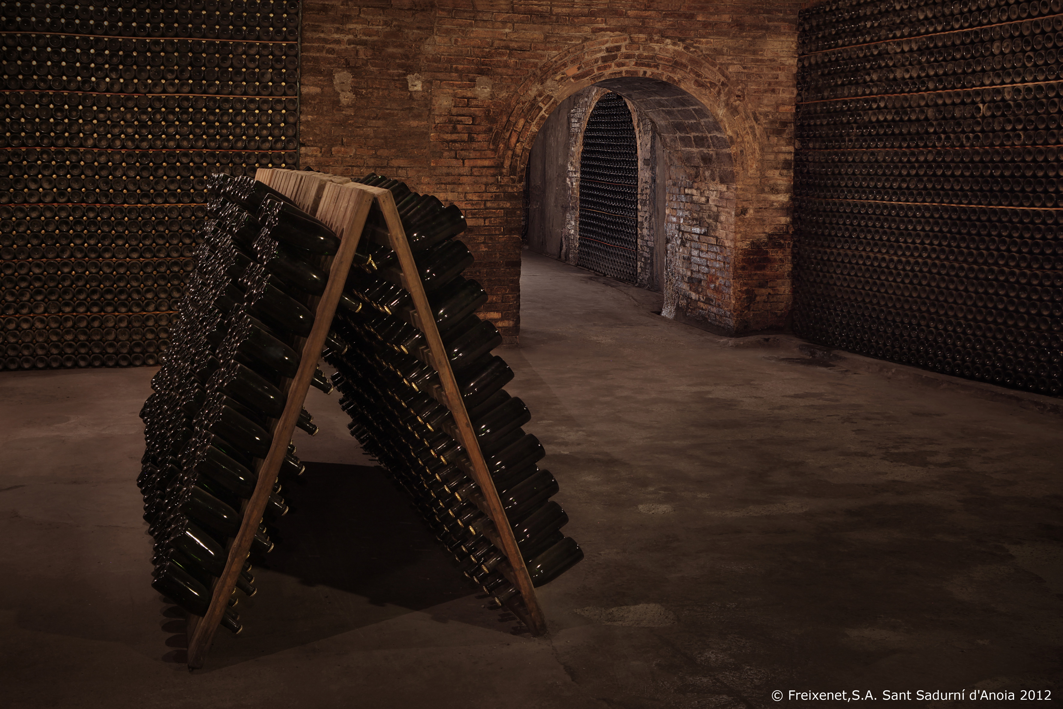 cellar-9-big